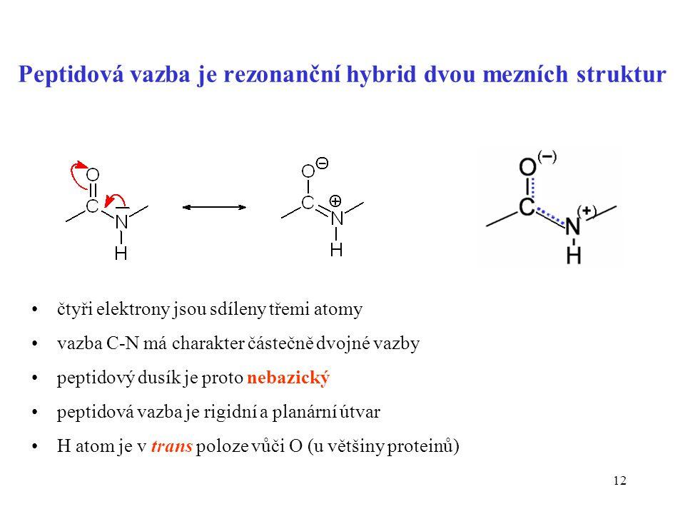 12 Peptidová vazba je rezonanční hybrid dvou mezních struktur čtyři elektrony jsou sdíleny třemi atomy vazba C-N má charakter částečně dvojné vazby pe