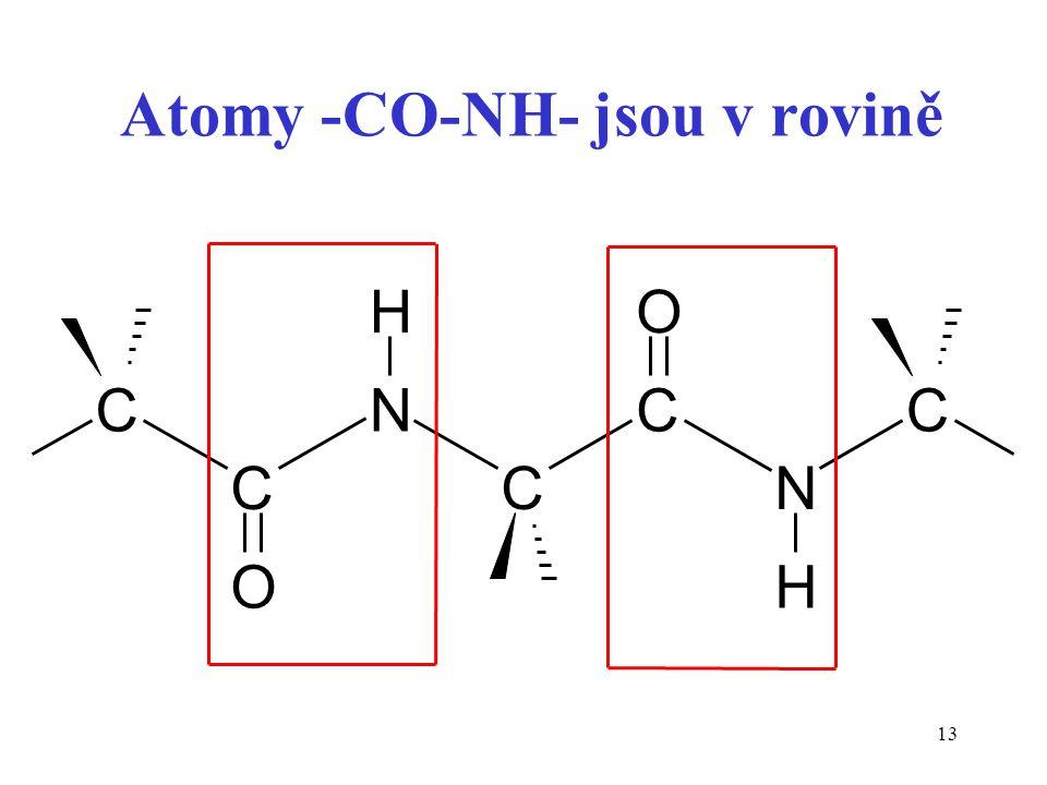 13 Atomy -CO-NH- jsou v rovině C C N C C N C O HO H