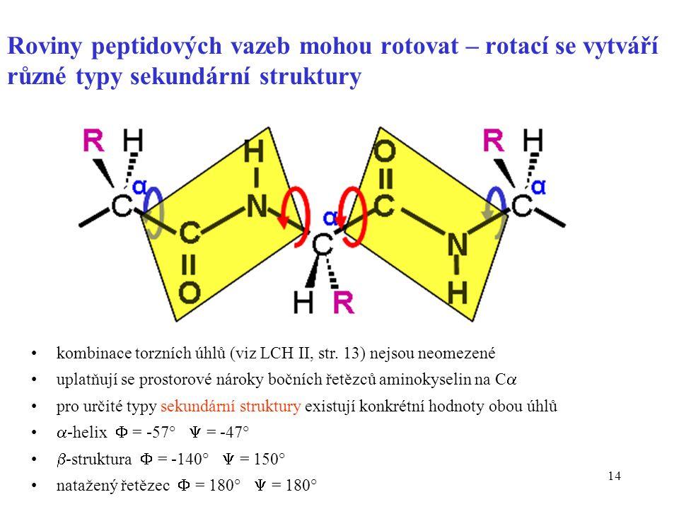 14 Roviny peptidových vazeb mohou rotovat – rotací se vytváří různé typy sekundární struktury kombinace torzních úhlů (viz LCH II, str. 13) nejsou neo
