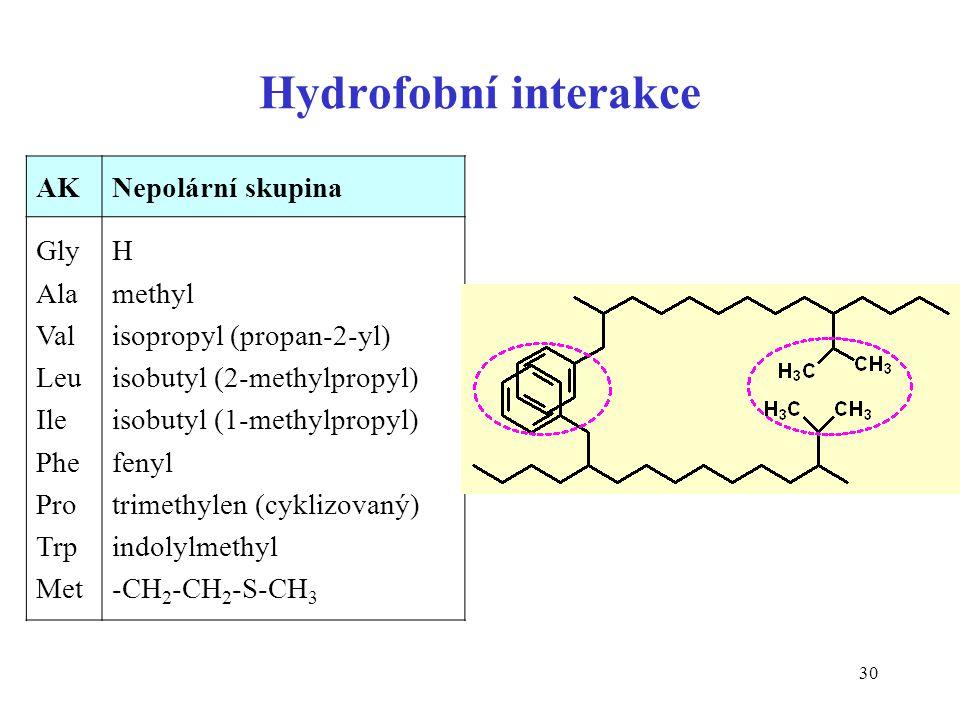 30 Hydrofobní interakce AKAKNepolární skupina Gly Ala Val Leu Ile Phe Pro Trp Met H methyl isopropyl (propan-2-yl) isobutyl (2-methylpropyl) isobutyl
