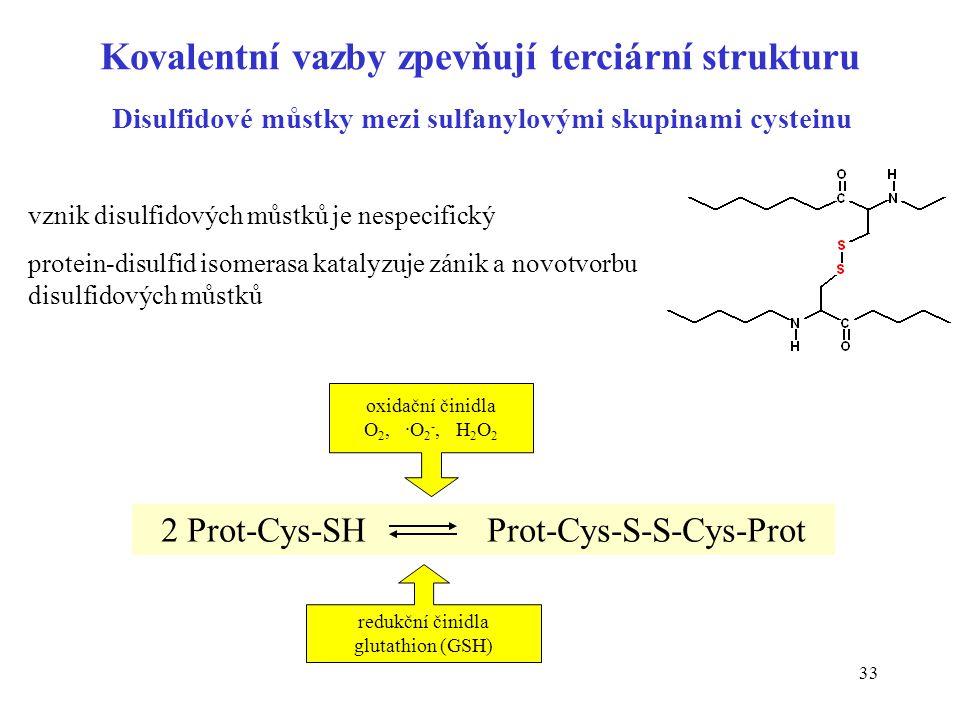 33 Kovalentní vazby zpevňují terciární strukturu Disulfidové můstky mezi sulfanylovými skupinami cysteinu 2 Prot-Cys-SH Prot-Cys-S-S-Cys-Prot oxidační
