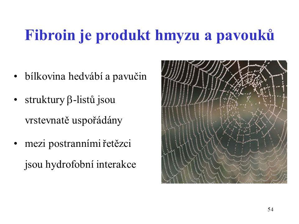54 Fibroin je produkt hmyzu a pavouků bílkovina hedvábí a pavučin struktury  -listů jsou vrstevnatě uspořádány mezi postranními řetězci jsou hydrofob