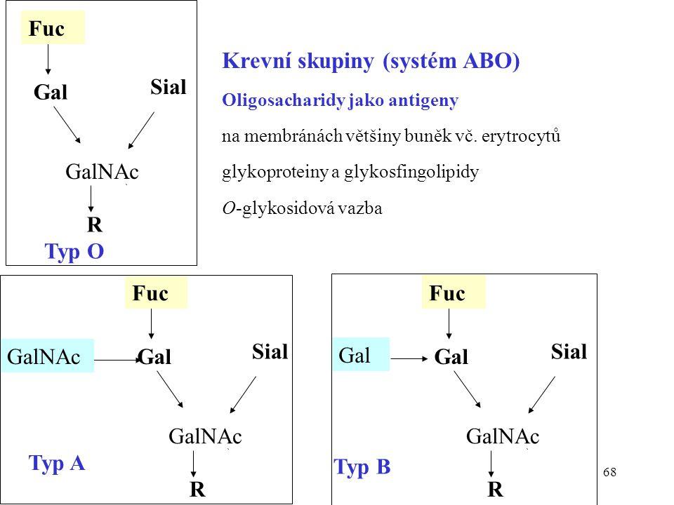 68 R GalNAc Sial Gal Fuc Typ O R GalNAc Sial Gal Fuc Gal Typ B R GalNAc Sial Gal Fuc GalNAc Typ A Krevní skupiny (systém ABO) Oligosacharidy jako anti