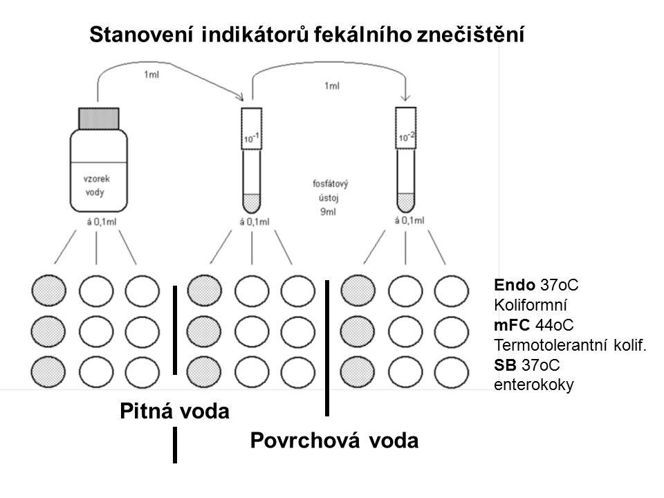 Stanovení indikátorů fekálního znečištění Pitná voda Povrchová voda Endo 37oC Koliformní mFC 44oC Termotolerantní kolif.