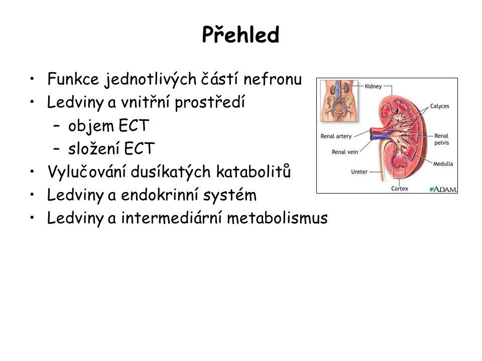 Funkce ledvin udržování stálého objemu ECT a ICT, její osmola r ity, pH, koncentrace iontů vylučování katabolitů a cizorodých látek Z toho vyplývá: rychlý průtok krve ledvinami →↑ spotřeba O 2 ledvinami vysoká spotřeba Glc, dále FA, laktátu, Pyr a glukogenních AA V ledvinách probíhá glomerulární filtrace, tubulární resorpce a sekrece.