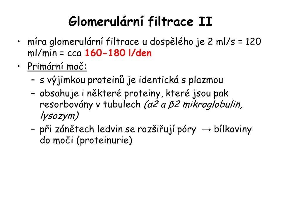 Glomerulární filtrace II míra glomerulární filtrace u dospělého je 2 ml/s = 120 ml/min = cca 160-180 l/den Primární moč: –s výjimkou proteinů je ident