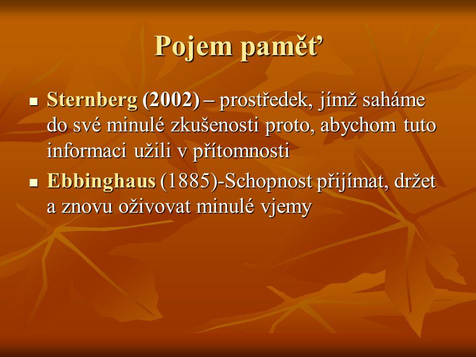 Pojem paměť Sternberg (2002) – prostředek, jímž saháme do své minulé zkušenosti proto, abychom tuto informaci užili v přítomnosti Sternberg (2002) – prostředek, jímž saháme do své minulé zkušenosti proto, abychom tuto informaci užili v přítomnosti Ebbinghaus (1885)-Schopnost přijímat, držet a znovu oživovat minulé vjemy Ebbinghaus (1885)-Schopnost přijímat, držet a znovu oživovat minulé vjemy