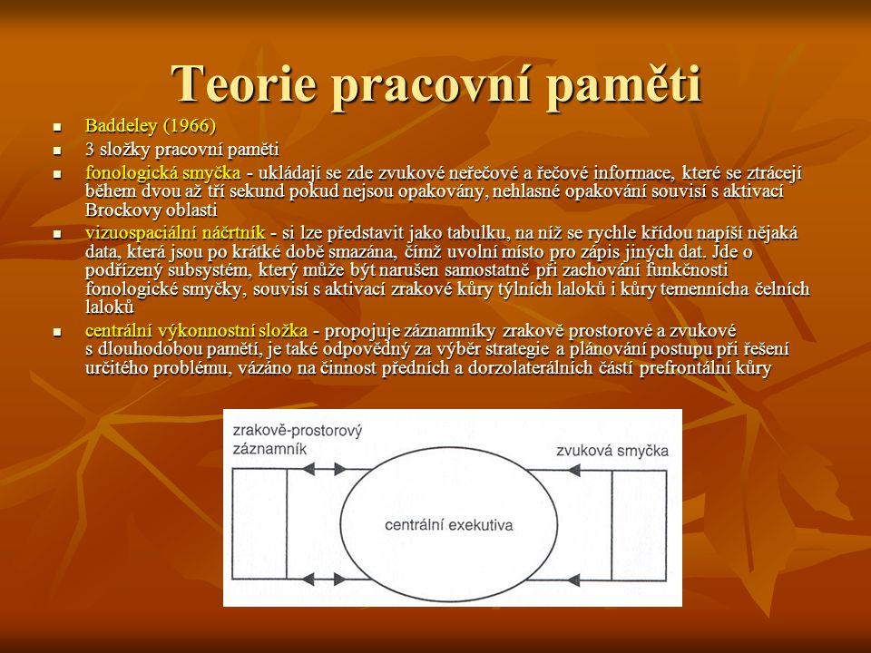 Teorie pracovní paměti Baddeley (1966) Baddeley (1966) 3 složky pracovní paměti 3 složky pracovní paměti fonologická smyčka - ukládají se zde zvukové neřečové a řečové informace, které se ztrácejí během dvou až tří sekund pokud nejsou opakovány, nehlasné opakování souvisí s aktivací Brockovy oblasti fonologická smyčka - ukládají se zde zvukové neřečové a řečové informace, které se ztrácejí během dvou až tří sekund pokud nejsou opakovány, nehlasné opakování souvisí s aktivací Brockovy oblasti vizuospaciální náčrtník - si lze představit jako tabulku, na níž se rychle křídou napíší nějaká data, která jsou po krátké době smazána, čímž uvolní místo pro zápis jiných dat.