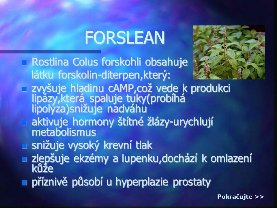 FORSLEAN Rostlina Colus forskohli obsahuje Rostlina Colus forskohli obsahuje látku forskolin-diterpen,který: látku forskolin-diterpen,který: zvyšuje hladinu cAMP,což vede k produkci lipázy,která spaluje tuky(probíhá lipolýza)snižuje nadváhu zvyšuje hladinu cAMP,což vede k produkci lipázy,která spaluje tuky(probíhá lipolýza)snižuje nadváhu aktivuje hormony štítné žlázy-urychlují metabolismus aktivuje hormony štítné žlázy-urychlují metabolismus snižuje vysoký krevní tlak snižuje vysoký krevní tlak zlepšuje ekzémy a lupenku,dochází k omlazení kůže zlepšuje ekzémy a lupenku,dochází k omlazení kůže příznivě působí u hyperplazie prostaty příznivě působí u hyperplazie prostaty Pokračujte >>