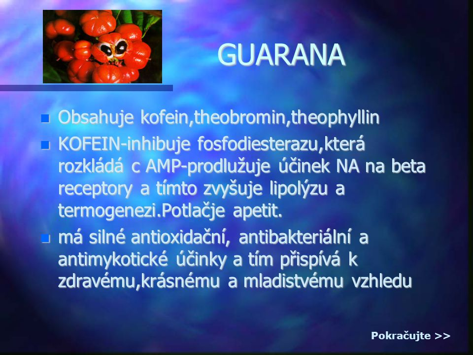 GUARANA Obsahuje kofein,theobromin,theophyllin Obsahuje kofein,theobromin,theophyllin KOFEIN-inhibuje fosfodiesterazu,která rozkládá c AMP-prodlužuje účinek NA na beta receptory a tímto zvyšuje lipolýzu a termogenezi.Potlačje apetit.