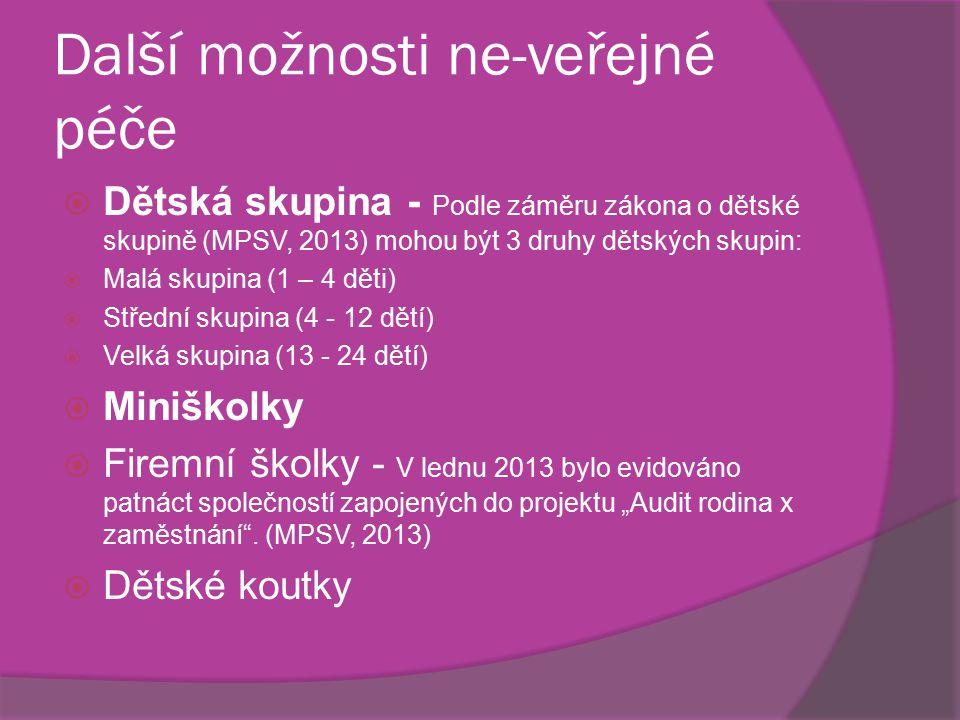 Další možnosti ne-veřejné péče  Dětská skupina - Podle záměru zákona o dětské skupině (MPSV, 2013) mohou být 3 druhy dětských skupin:  Malá skupina