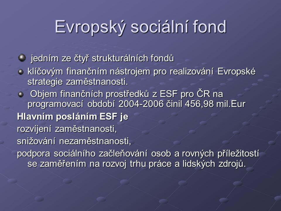 jedním ze čtyř strukturálních fondů jedním ze čtyř strukturálních fondů klíčovým finančním nástrojem pro realizování Evropské strategie zaměstnanosti.