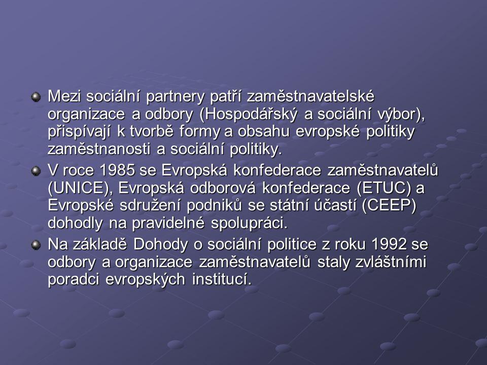 Mezi sociální partnery patří zaměstnavatelské organizace a odbory (Hospodářský a sociální výbor), přispívají k tvorbě formy a obsahu evropské politiky zaměstnanosti a sociální politiky.