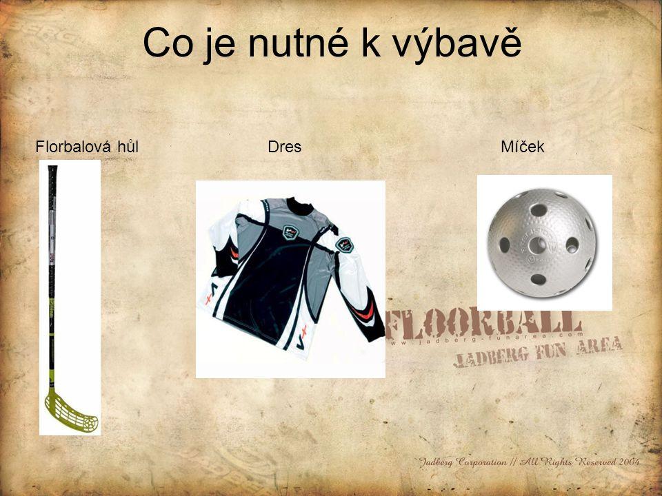 Co je nutné k výbavě Florbalová hůl Dres Míček