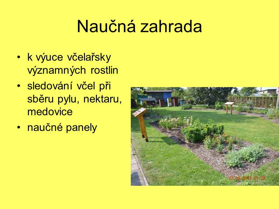 Naučná zahrada k výuce včelařsky významných rostlin sledování včel při sběru pylu, nektaru, medovice naučné panely