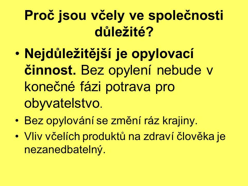 ZO ČSV Frýdek-Místek se od r.