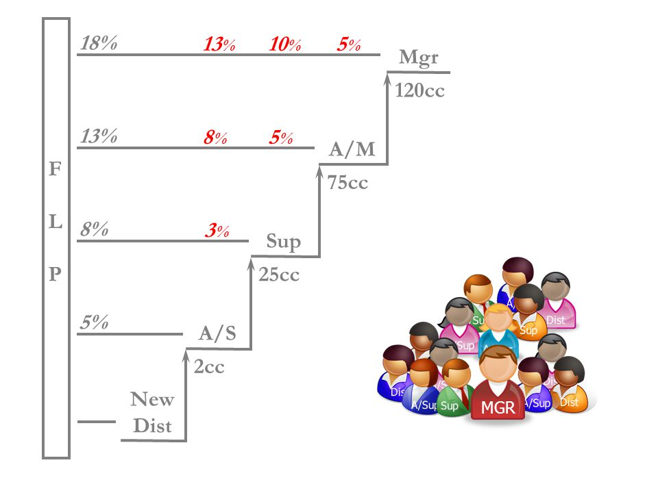 3%3% 5%5% A/Sup Dist A/Sup Sup A/Sup A/Mgr 13 % Dist A/Sup Dist A/Sup Dist A/Sup Sup A/Sup 5% 2cc FLPFLP 8% 13% New Dist 25cc Sup 75cc A/M A/S 18% 120cc Mgr Group Volume Bonus MGR 8%8% 5%5% 13 % 10 % 5%5% 3%3%