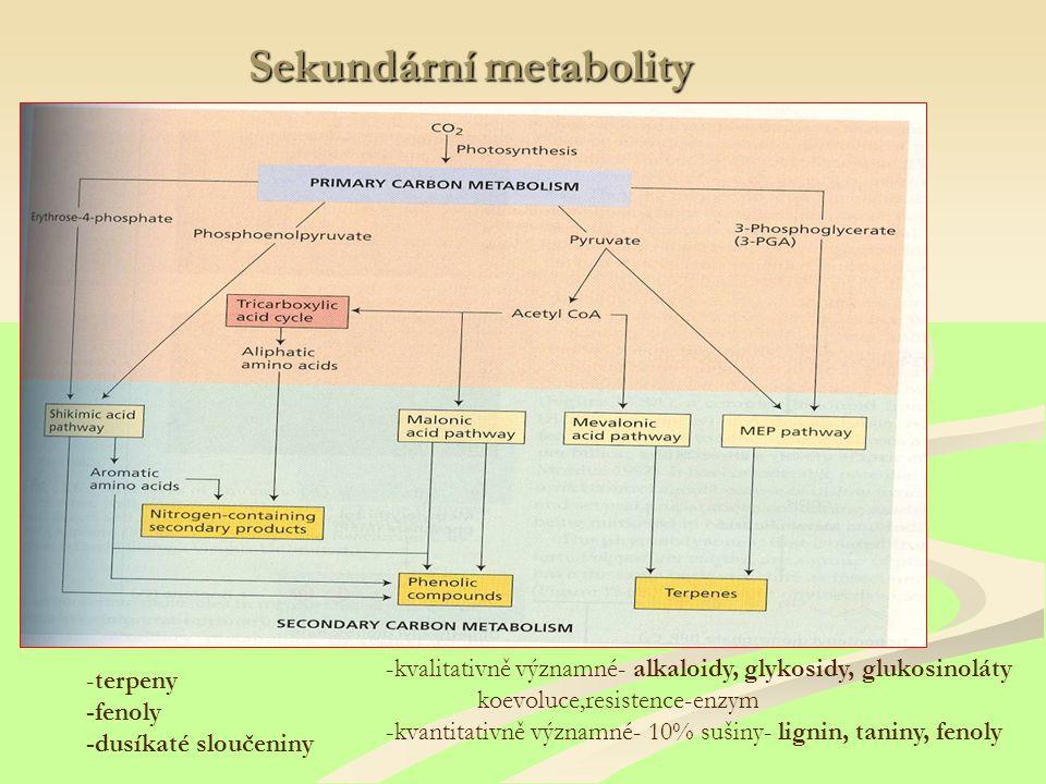 Sekundární metabolity -terpeny -fenoly -dusíkaté sloučeniny -kvalitativně významné- alkaloidy, glykosidy, glukosinoláty koevoluce,resistence-enzym -kvantitativně významné- 10% sušiny- lignin, taniny, fenoly