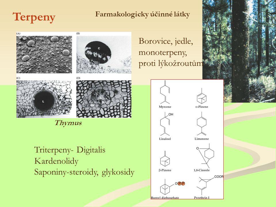 Farmakologicky účinné látky Terpeny Borovice, jedle, monoterpeny, proti lýkožroutům Thymus Triterpeny- Digitalis Kardenolidy Saponiny-steroidy, glykosidy