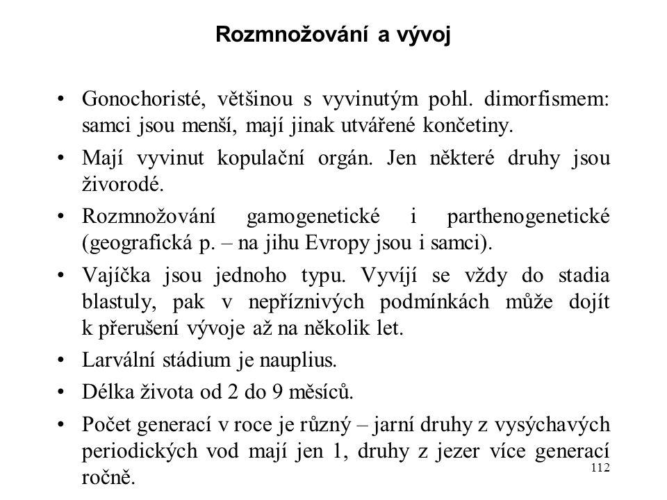 112 Rozmnožování a vývoj Gonochoristé, většinou s vyvinutým pohl. dimorfismem: samci jsou menší, mají jinak utvářené končetiny. Mají vyvinut kopulační