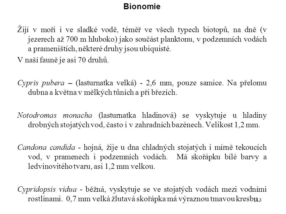113 Bionomie Žijí v moři i ve sladké vodě, téměř ve všech typech biotopů, na dně (v jezerech až 700 m hluboko) jako součást planktonu, v podzemních vodách a prameništích, některé druhy jsou ubiquisté.