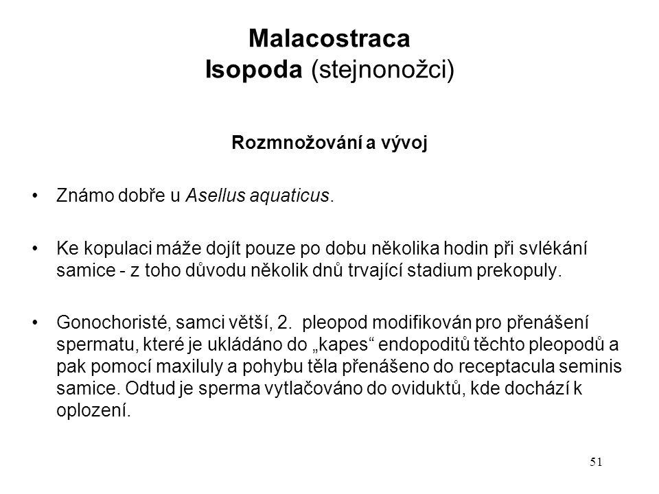 51 Rozmnožování a vývoj Známo dobře u Asellus aquaticus.