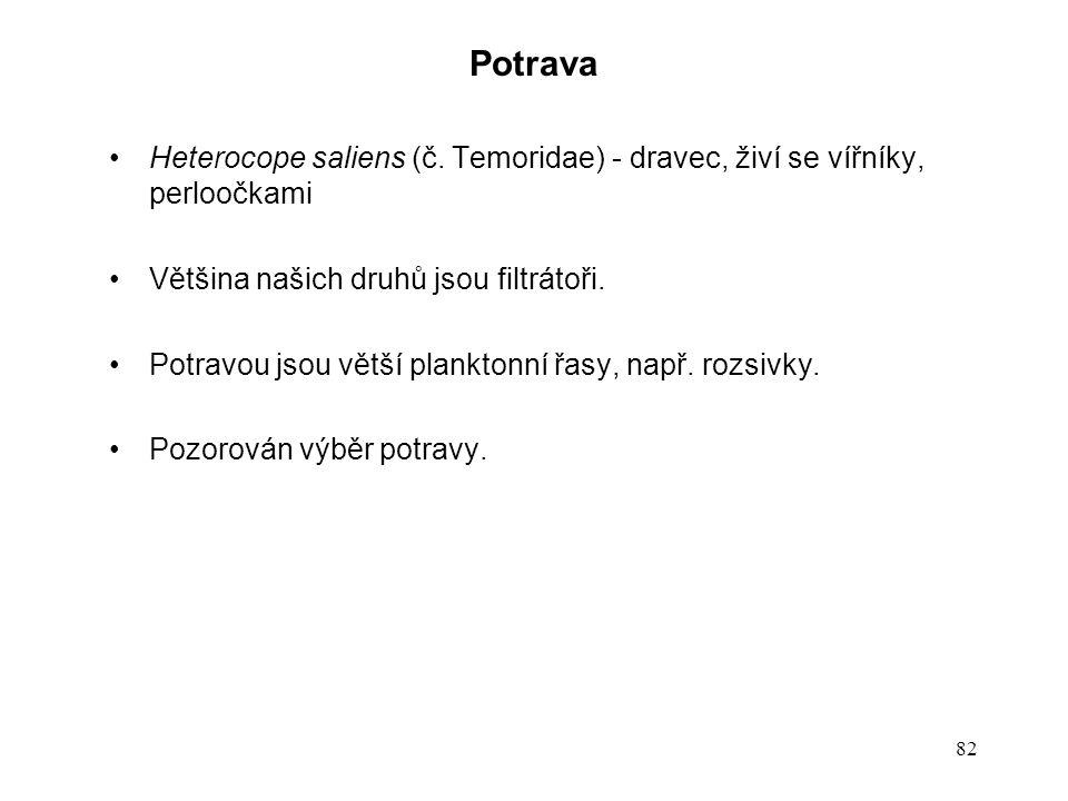 82 Potrava Heterocope saliens (č. Temoridae) - dravec, živí se vířníky, perloočkami Většina našich druhů jsou filtrátoři. Potravou jsou větší plankton