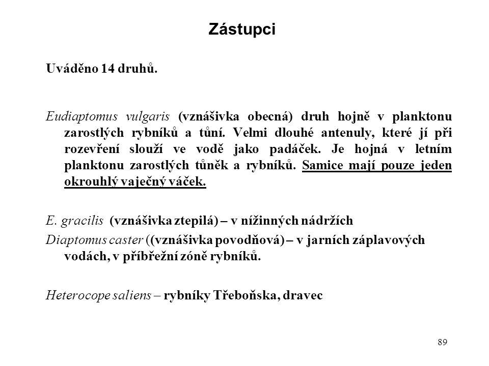 89 Zástupci Uváděno 14 druhů. Eudiaptomus vulgaris (vznášivka obecná) druh hojně v planktonu zarostlých rybníků a tůní. Velmi dlouhé antenuly, které j