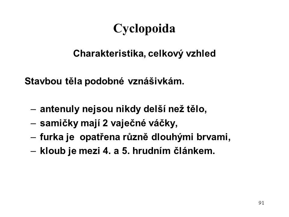 91 Cyclopoida Charakteristika, celkový vzhled Stavbou těla podobné vznášivkám. –antenuly nejsou nikdy delší než tělo, –samičky mají 2 vaječné váčky, –