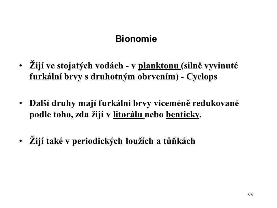 99 Bionomie Žijí ve stojatých vodách - v planktonu (silně vyvinuté furkální brvy s druhotným obrvením) - Cyclops Další druhy mají furkální brvy víceméně redukované podle toho, zda žijí v litorálu nebo benticky.