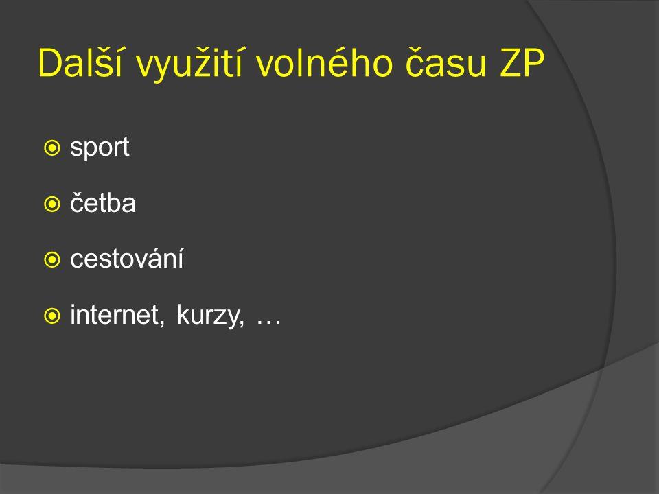 Další využití volného času ZP  sport  četba  cestování  internet, kurzy, …
