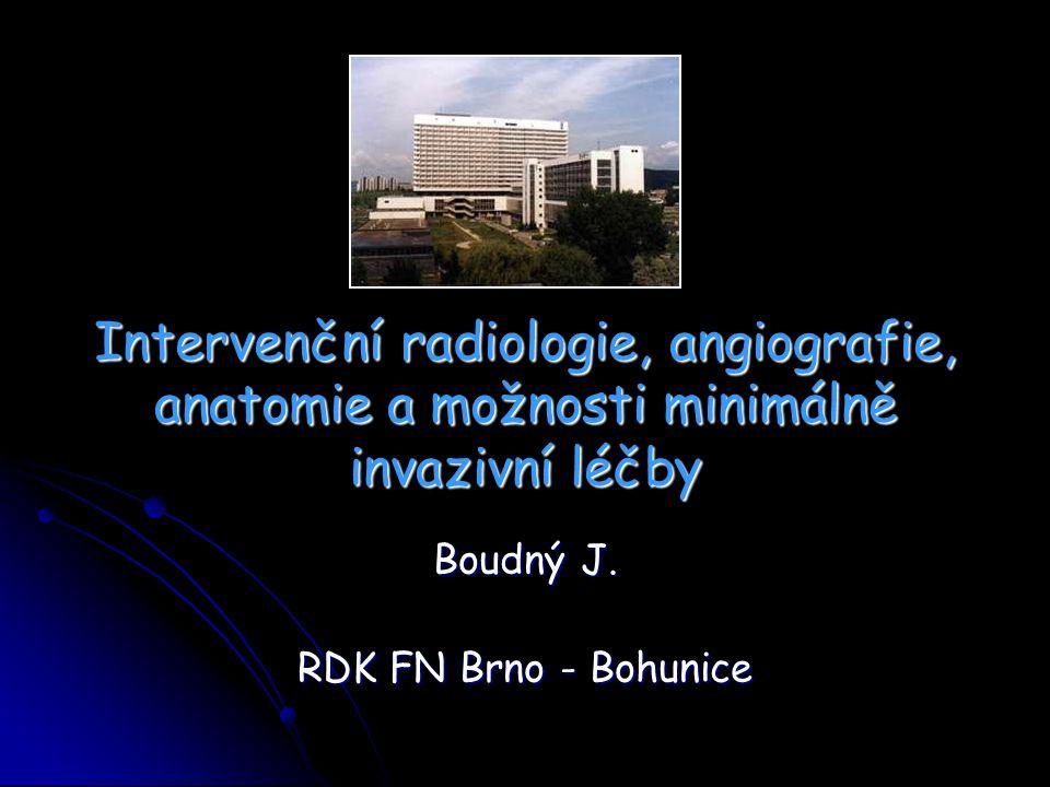 Intervenční radiologie, angiografie, anatomie a možnosti minimálně invazivní léčby Boudný J. RDK FN Brno - Bohunice