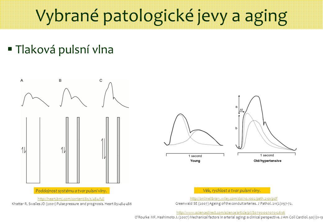 Vybrané patologické jevy a aging  Tlaková pulsní vlna Poddajnost systému a tvar pulsní vlny. Věk, rychlost a tvar pulsní vlny. http://heart.bmj.com/c