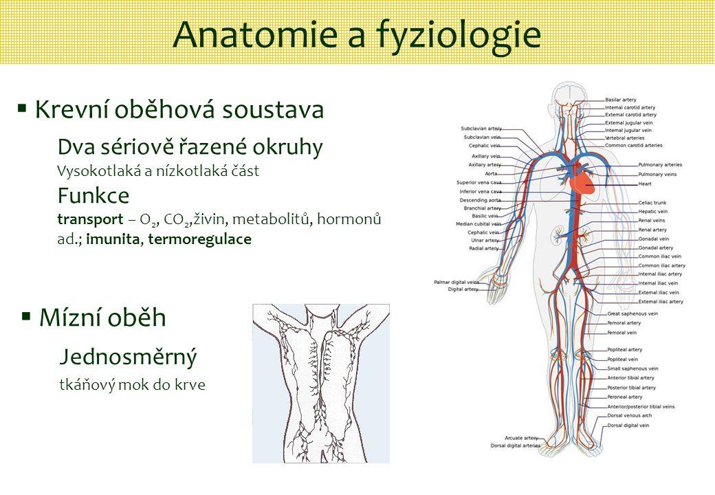 Anatomie a fyziologie  Krevní oběhová soustava Dva sériově řazené okruhy Vysokotlaká a nízkotlaká část Funkce transport – O 2, CO 2,živin, metabolitů