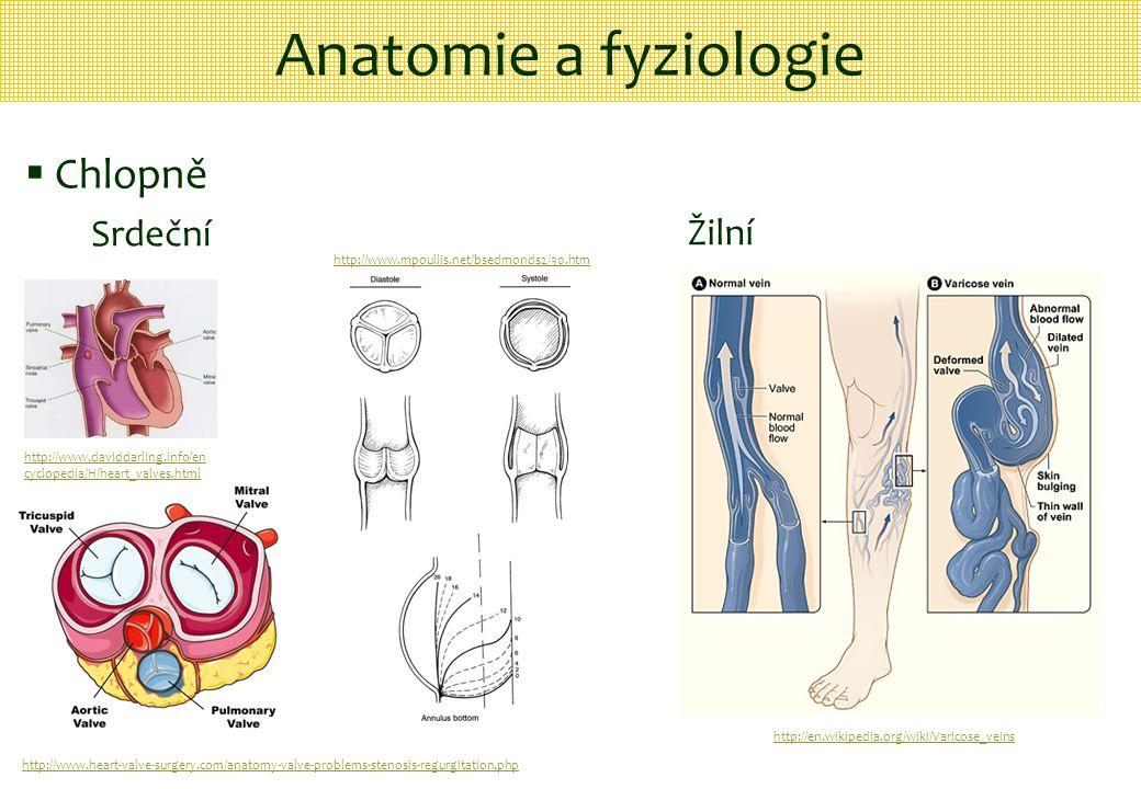 Anatomie a fyziologie  Chlopně Srdeční Žilní http://www.daviddarling.info/en cyclopedia/H/heart_valves.html http://www.heart-valve-surgery.com/anatom