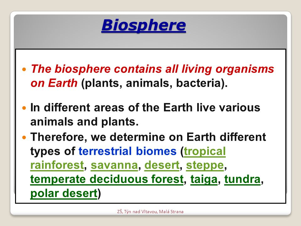 Biosphere The biosphere contains all living organisms on Earth (plants, animals, bacteria).