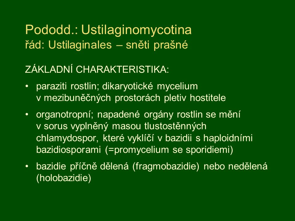 Pododd.: Ustilaginomycotina řád: Ustilaginales – sněti prašné ZÁKLADNÍ CHARAKTERISTIKA: paraziti rostlin; dikaryotické mycelium v mezibuněčných prostorách pletiv hostitele organotropní; napadené orgány rostlin se mění v sorus vyplněný masou tlustostěnných chlamydospor, které vyklíčí v bazidii s haploidními bazidiosporami (=promycelium se sporidiemi) bazidie příčně dělená (fragmobazidie) nebo nedělená (holobazidie)