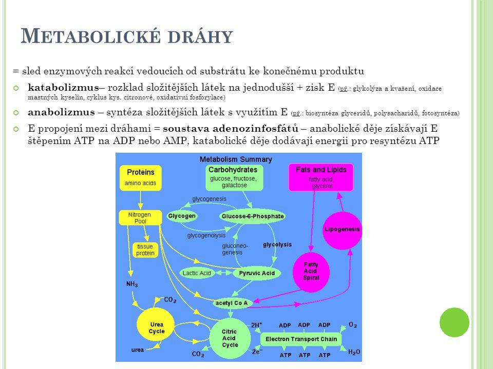4) Zjištění respiračního koeficientu (kvocientu) RQ=V CO2 vydýchaného / V O2spotřebovaného ; RQ = 0,85 (smíšená potrava) = kolik molekul O 2 je třeba na spálení určité látky (výživa pouze sacharidy...) cukry (glukóza) RQ = 6/6 = 1 C 6 H 12 O 6 + 6O 2 → 6CO 2 + 6H 2 O proteiny (podíl ve výživě je konstantní) RQ = 0,8 lipidy (tripalmitin) RQ = 102/147 = 0,7 2C 51 H 98 O 6 + 145O 2 → 102CO 2 + 98H 2 O nadbytek cukrů → ukládání ve formě tuků (lipogeneze): sacharidy → lipidy ( RQ>1 ) krize, hladovění, diabetes - málo cukrů, proteiny + lipidy → sacharidy ( RQ<1 ) Fyzikální spalné teplo (ST fy ) Fyziologické spalné teplo (ST fl ) Energetický ekvivalent (EE) Respirační kvocient (RQ) Sacharidy17,2 kJ/g 21,14 kJ/l O 2 1 Proteiny23,0 kJ/g17,2 kJ/g18,67 kJ/l O 2 0,8 Lipidy38,9 kJ/g 19,85 kJ/l O 2 0,7 Průměr20,2 kJ/l O 2 0,85 ke spálení 1 mol glukózy je třeba 6 mol O 2 (6.