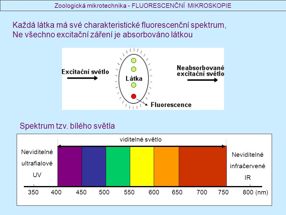 350 400 450 500 550 600 650 700 750 800 (nm) viditelné světlo Neviditelné ultrafialové UV Neviditelné infračervené IR Spektrum tzv. bílého světla Každ