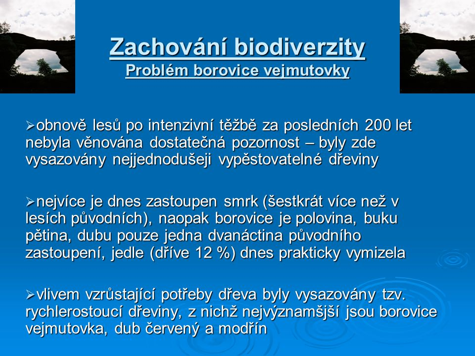 Zachování biodiverzity Problém borovice vejmutovky  obnově lesů po intenzivní těžbě za posledních 200 let nebyla věnována dostatečná pozornost – byly