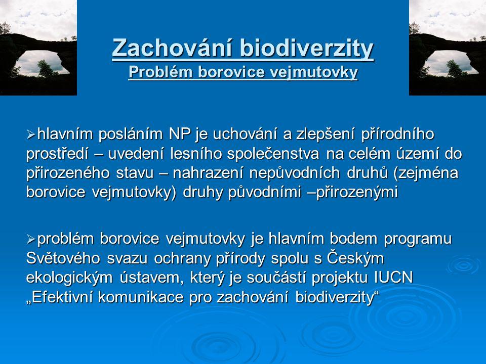 Zachování biodiverzity Problém borovice vejmutovky  hlavním posláním NP je uchování a zlepšení přírodního prostředí – uvedení lesního společenstva na