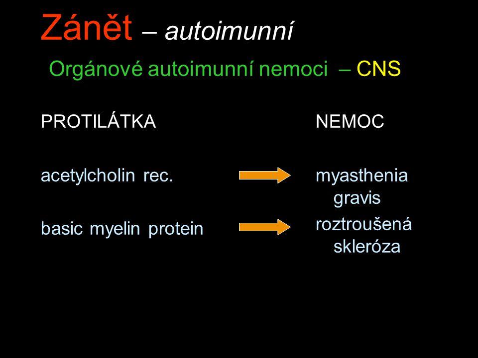 Zánět – autoimunní Orgánové autoimunní nemoci – CNS PROTILÁTKA acetylcholin rec. basic myelin protein NEMOC myasthenia gravis roztroušená skleróza