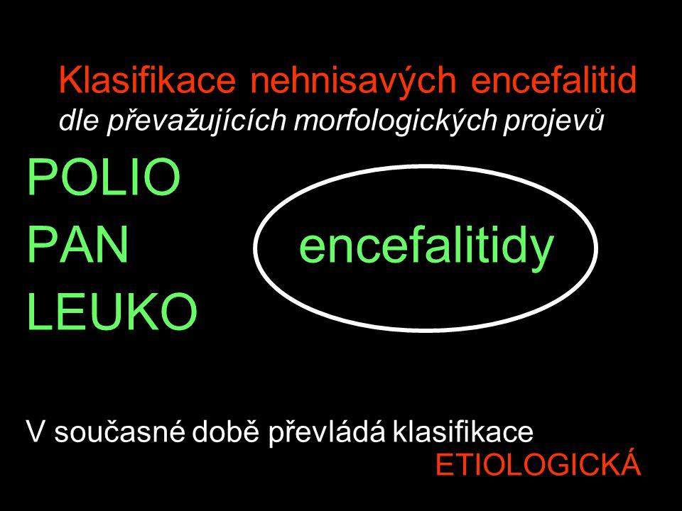 Klasifikace nehnisavých encefalitid dle převažujících morfologických projevů POLIO PANencefalitidy LEUKO V současné době převládá klasifikace ETIOLOGI