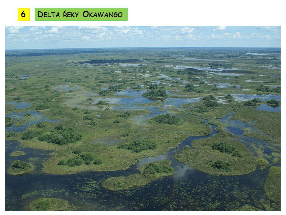 tropické a subtropické podnebné pásmo srážek ubývá od východu k západu nejvíce srážek přináší letní monzuny vanoucí od Indického oceánu na návětrných stranách hor spadne v období dešťů 1000 – 2000 mm srážek nejméně srážek spadne v pouštních a polopouštních oblastech Kalahari a Namib v regionu jsou především savany a řídké savanové lesy v nížinách v Mosambiku jsou tropické lesy jih regionu má vegetaci středomořského typu P ODNEBÍ B IOTA
