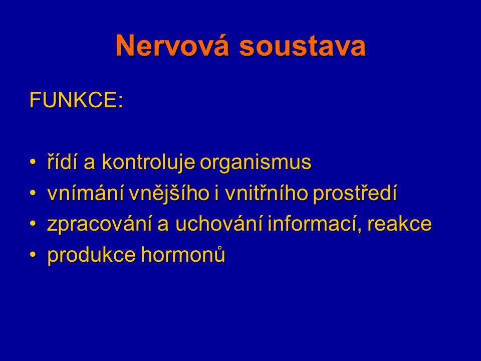 FUNKCE: řídí a kontroluje organismusřídí a kontroluje organismus vnímání vnějšího i vnitřního prostředívnímání vnějšího i vnitřního prostředí zpracová