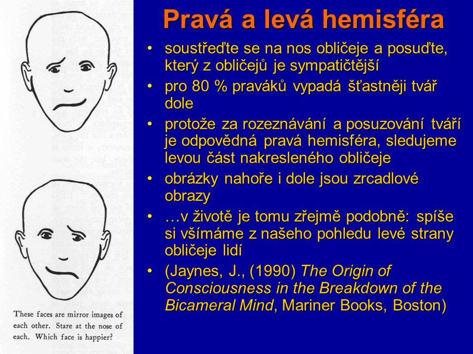 Pravá a levá hemisféra soustřeďte se na nos obličeje a posuďte, který z obličejů je sympatičtějšísoustřeďte se na nos obličeje a posuďte, který z obli