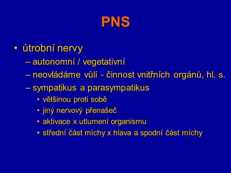 PNS útrobní nervyútrobní nervy –autonomní / vegetativní –neovládáme vůlí - činnost vnitřních orgánů, hl. s. –sympatikus a parasympatikus většinou prot