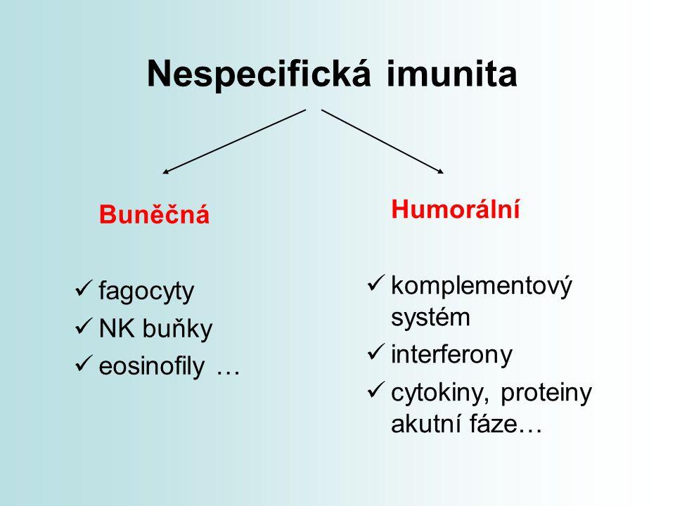 Nespecifická imunita Buněčná fagocyty NK buňky eosinofily … Humorální komplementový systém interferony cytokiny, proteiny akutní fáze…