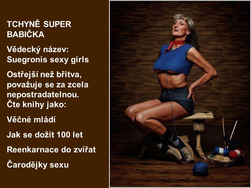 TCHYNĚ HYPERAKTIVNÍ Vědecký název: Suegronis Gimnastic Vstává brzy ráno a cvičí, chodí často do fit-center, brouzdá po internetových stránkách.