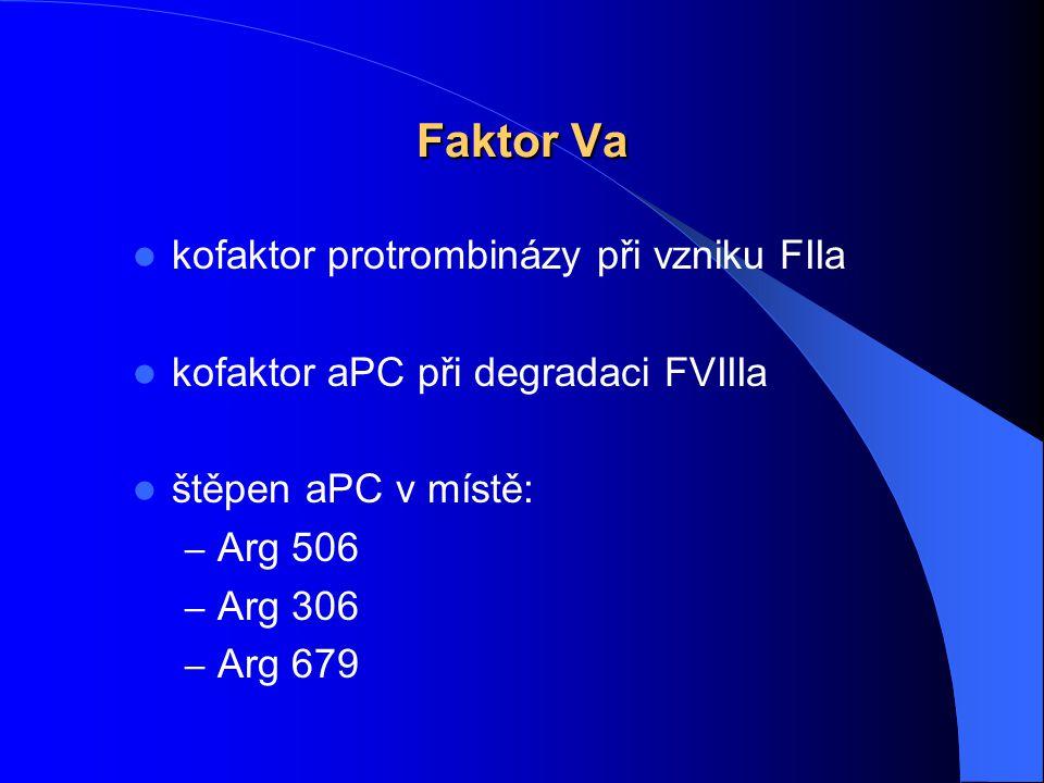 Faktor Va kofaktor protrombinázy při vzniku FIIa kofaktor aPC při degradaci FVIIIa štěpen aPC v místě: – Arg 506 – Arg 306 – Arg 679